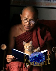 10-буддийский монах читает книгу